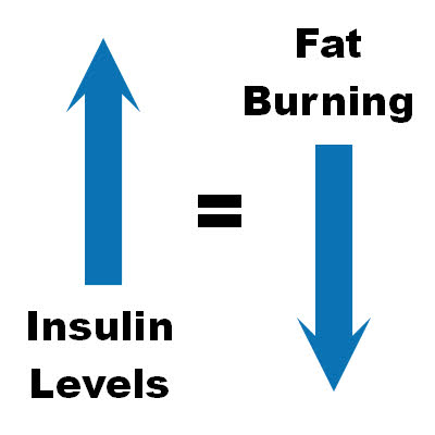 insulin levels and fat burning relationship